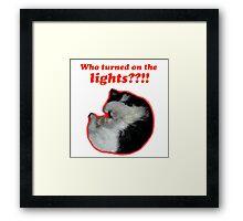 Who turned on the lights? Framed Print