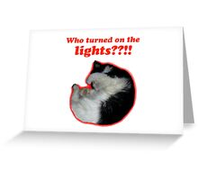 Who turned on the lights? Greeting Card