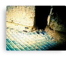 """ants lair Canvas Print"