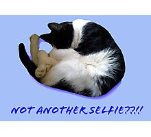 Not Another Selfie??!! - Cat Photographic Print