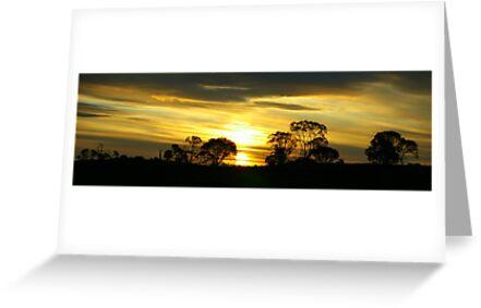 Nimmitabel Sunset by Melanie Roberts