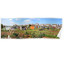 Panoramic of Garden Vegetable patches Poster