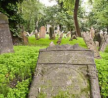Jewish Cemetery, Prague, Czech Republic by Jo Blunn