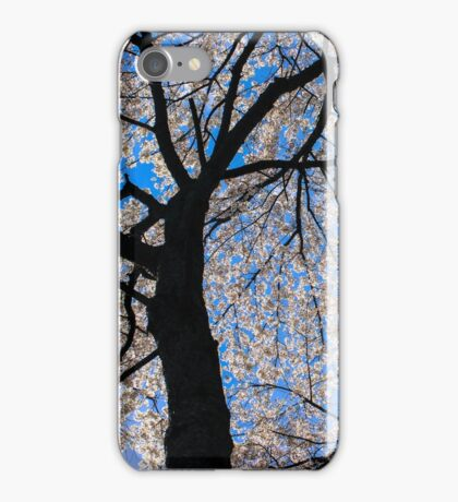 Weeping Cherry Tree iPhone Case/Skin