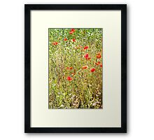 Red Poppies and Wild Flowers Framed Print
