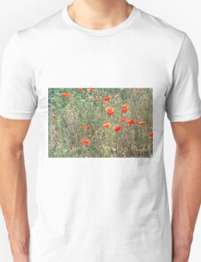 Red Poppies In A Summer Sun T-Shirt