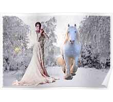 Lady Winters frosty shawl Poster