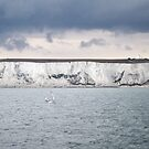 White Cliffs of Dover, England by Jo Blunn