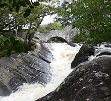 """""""The Cascade""""Killarney National Park,Co. Kerry,Ireland. by Pat Duggan"""