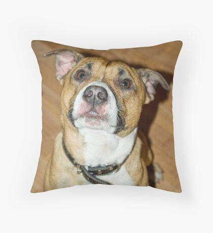 Please Throw Pillow