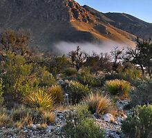 Fog At Sunrise - Guadalupe Mountains by Stephen Vecchiotti