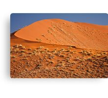 Red curve of dune Canvas Print