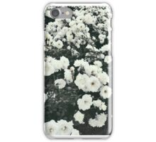 Pure Roses iPhone Case/Skin