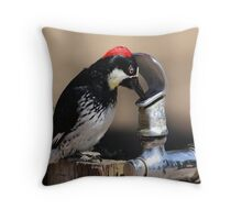 Woody and the Drinking Fountain Throw Pillow