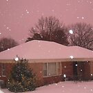 Snowfall & Pink Sky by bugboobunz
