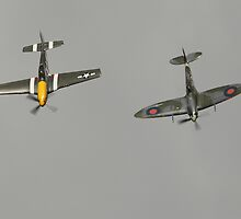 Supermarine Spitfire with P51 Mustang by Shane Ransom