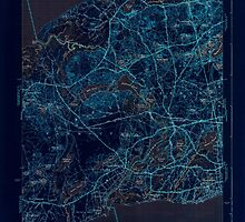 Massachusetts  USGS Historical Topo Map MA Dennis 351633 1943 31680 Inverted by wetdryvac