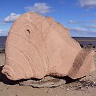 The Cramond Fish  by biddumy