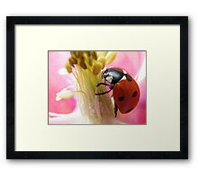 Inside your heart i want to be.... Framed Print