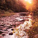 Canoe Creek at Dusk by teresa731