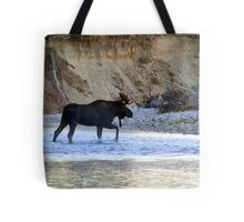 Young bull moose in the Bitterroot River Tote Bag