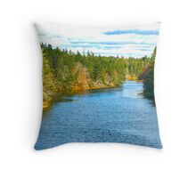 Salmon River Throw Pillow