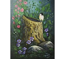 Chickadee On A Stump Photographic Print