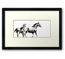 High Tackle - Thoroughbred Horses 3/3 Framed Print