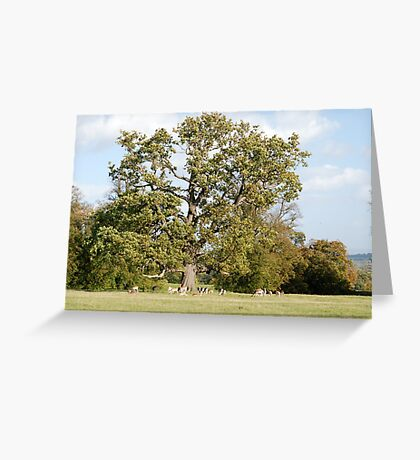 Large Tree and Deer Greeting Card