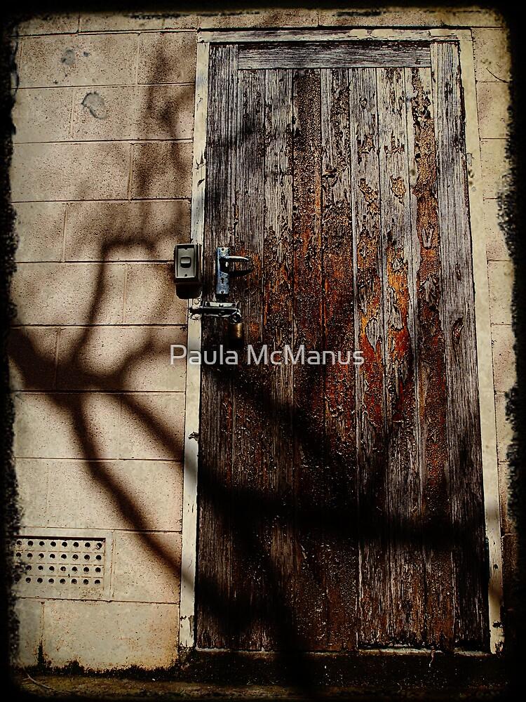 Shadow Security by Paula McManus