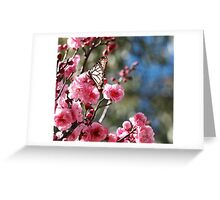 Blossoming Butterfly Greeting Card