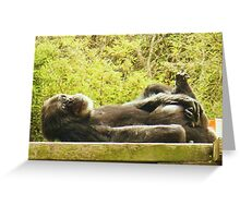 Resting Place Greeting Card