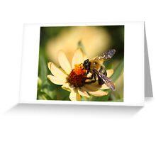 I am lovin it! Greeting Card