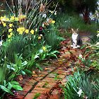 Cat in the Garden by Nadya Johnson