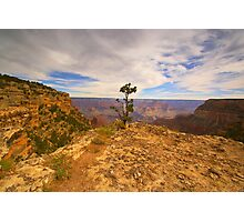 """The Grand Canyon"" Photographic Print"