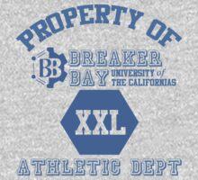 Property of Breaker Bay U by RaddSurfer