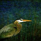Big Heron Bird by Susanne Van Hulst