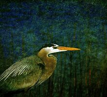 Big Heron Bird by Susanne Van Hulst