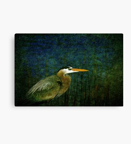 Big Heron Bird Canvas Print