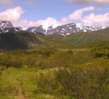 NORWAY Highlands in the summer Sticker