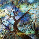 Dreaming Tree by EvaMarIza