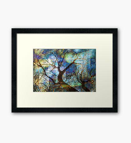 Dreaming Tree Framed Print