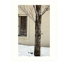A Tree in Detroit Art Print