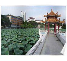 Bao Yue Pond Poster