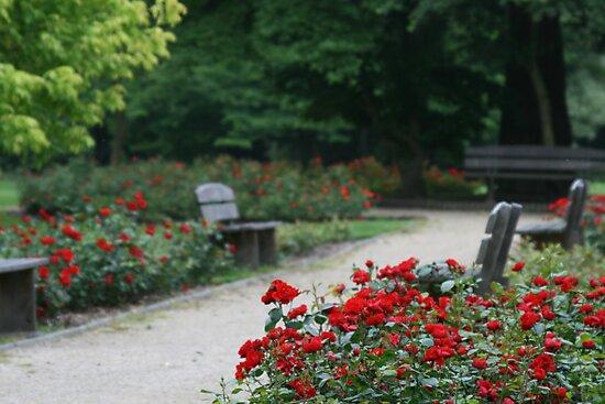 relaxation by DKphotoart