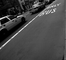 only bus. manhattan, nyc by tim buckley | bodhiimages