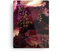 The Blood of the Grape Metal Print