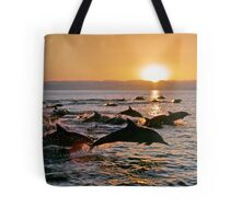 Long-beaked Common Dolphins at Sunset Tote Bag