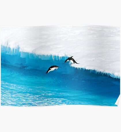 Adelie Penguin  Leap of Faith Poster