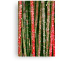 Bamboo Words Canvas Print
